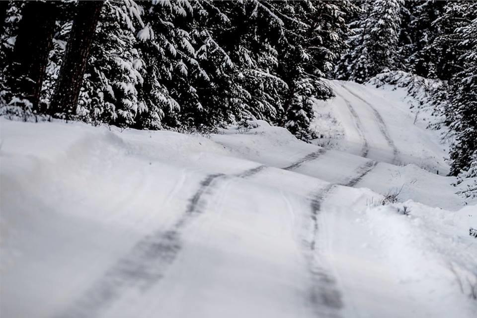 WRC Рели Шведска  Ден 1   Видео Материјал